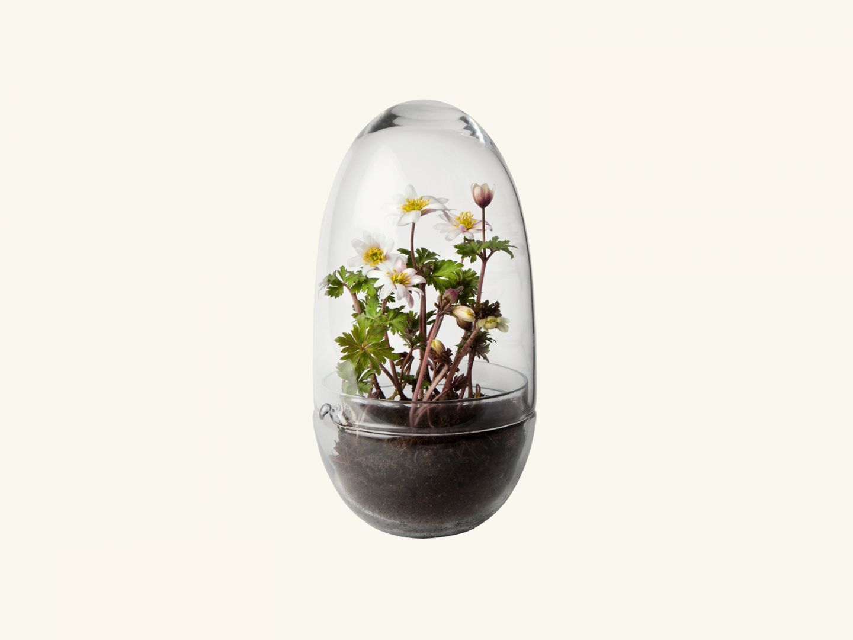 Grow Greenhouse Medium