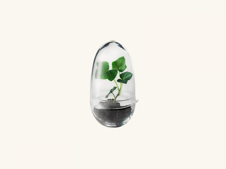 Grow Greenhouse Small
